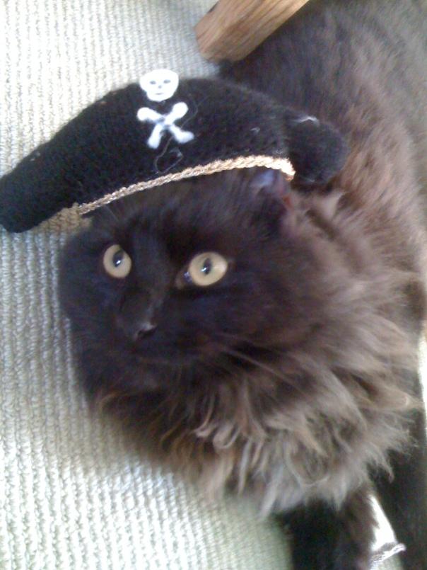 Captain Gonzo
